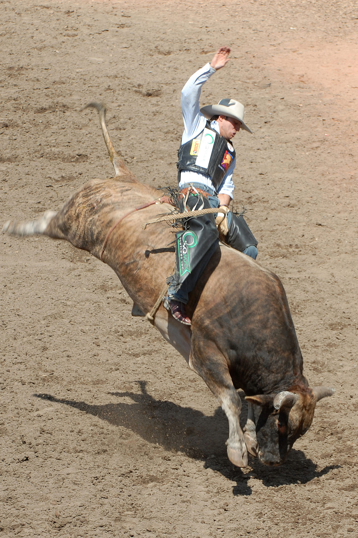 Bull Riding.jpg